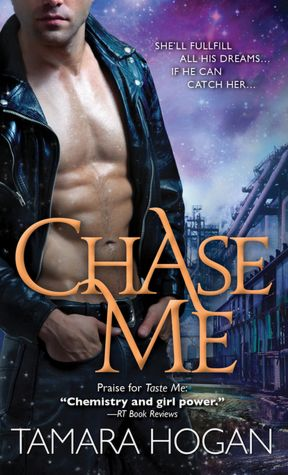Chase Me by Tamara Hogan