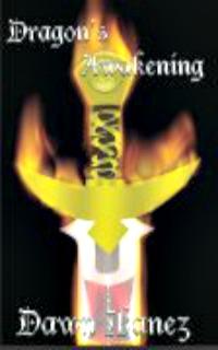 Dragon's Awakening by Dawn Ibanez